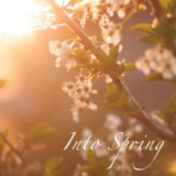 Into Spring