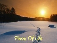 Pieces Of Life (2011 Edition)