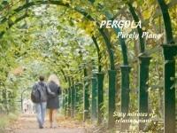 Pergola