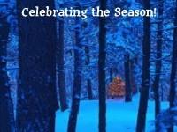 Winter Solstice: Celebrating The Season!