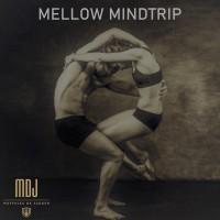 Mellow Mindtrip